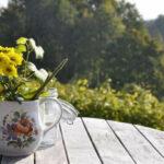Bord bænkesæt – alt om de klassiske og praktiske møbler til haven