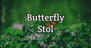 Butterfly Stol