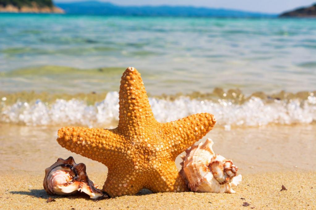 Kom i form igen efter ferien – 3 gode råd