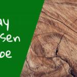 Kay Bojesen Abe – aben med sin egen personlighed