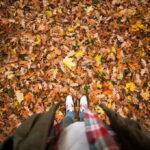 Få styr på hængepartierne i efterårsferien og vend tilbage med ny energi