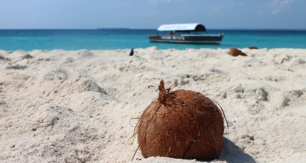 Det skal du spise på restauranter på Zanzibar