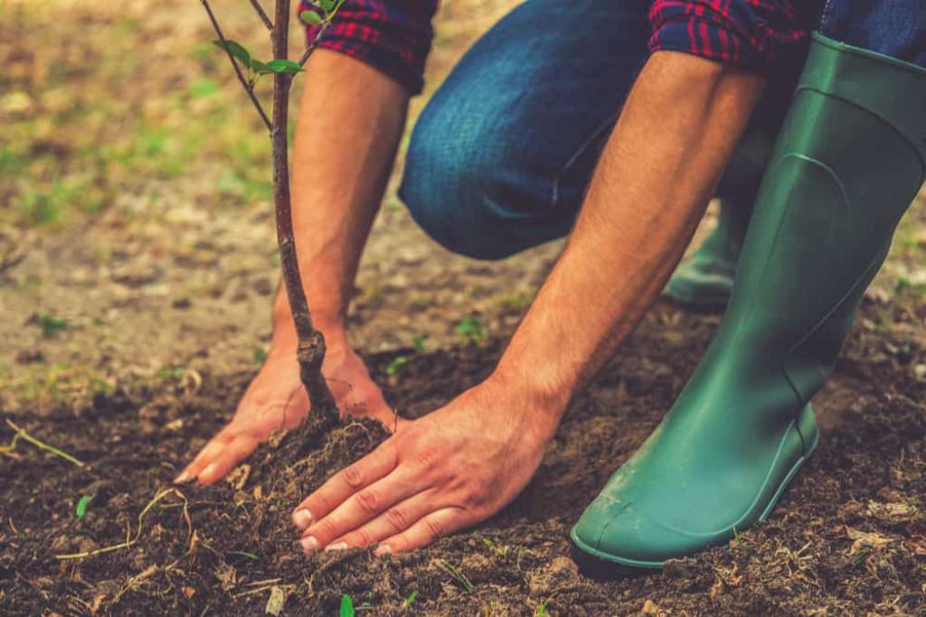 Få styr på hus og have inden sommerferien