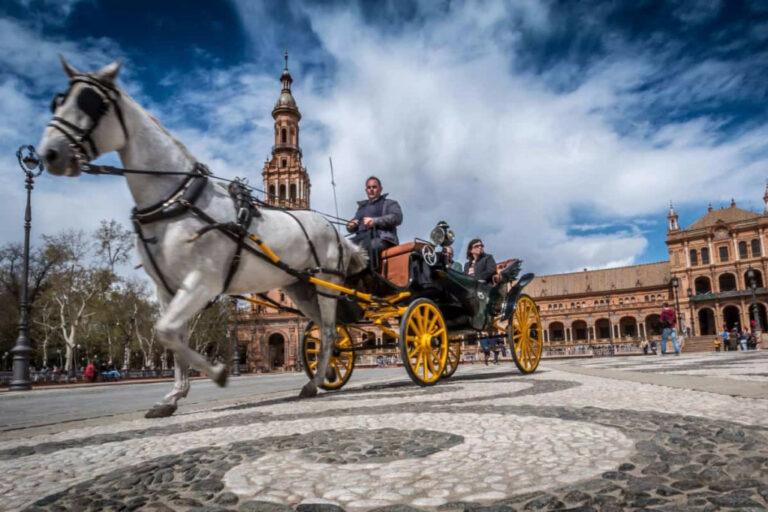hestevogn i spanien transport se mere her